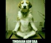 asu sila[kliklihat.blogspot.com]