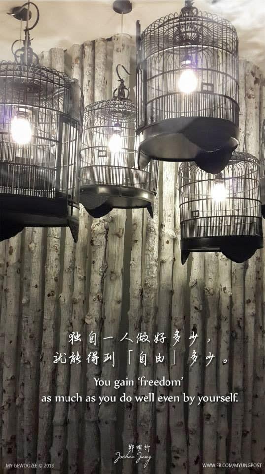郑明析,摄理,月明洞,笼子,自由,独自,Joshua Jung, Providence, Wolmyeong Dong, Cage, freedom, Alone