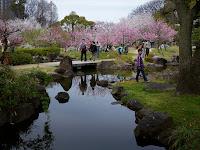 Osaka Garden Palace the Amazing Tourism Place