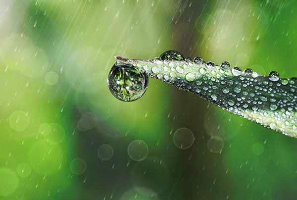 Regn på torra platser