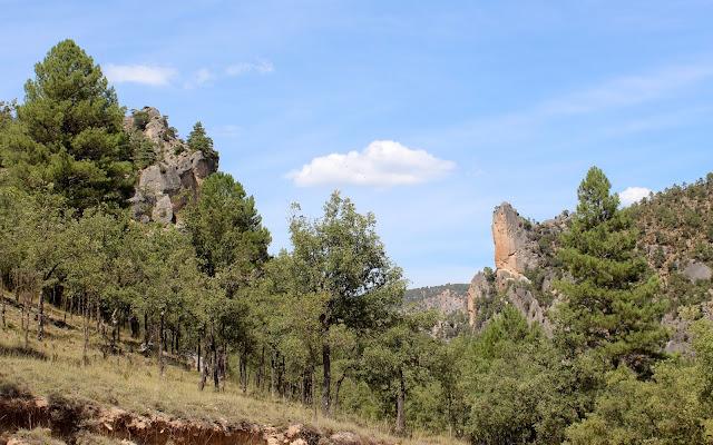 Cañones del Parque Natural del Alto Tajo