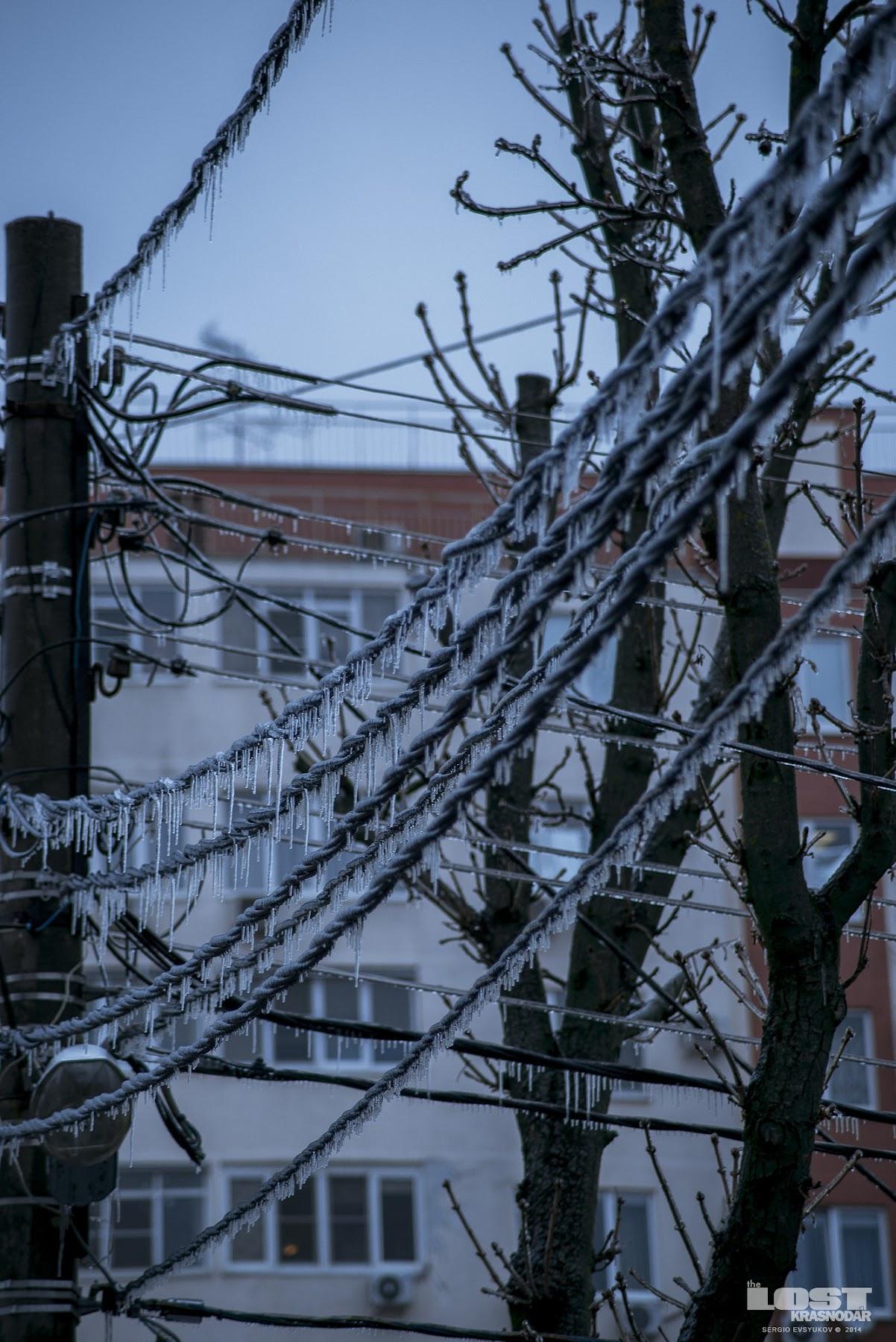 Последствия ледяного шторма
