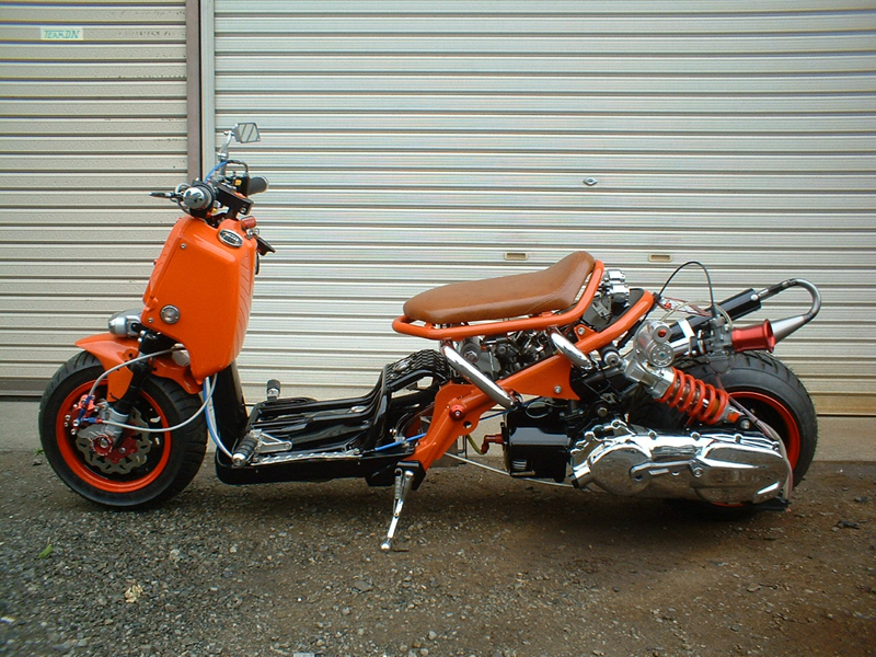Motorcycle 74 Custom Mopeds