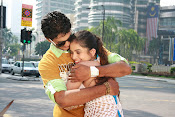 Nuvve Naa Bangaram Movie Photos-thumbnail-3