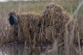 A photographer hiding in a haystack