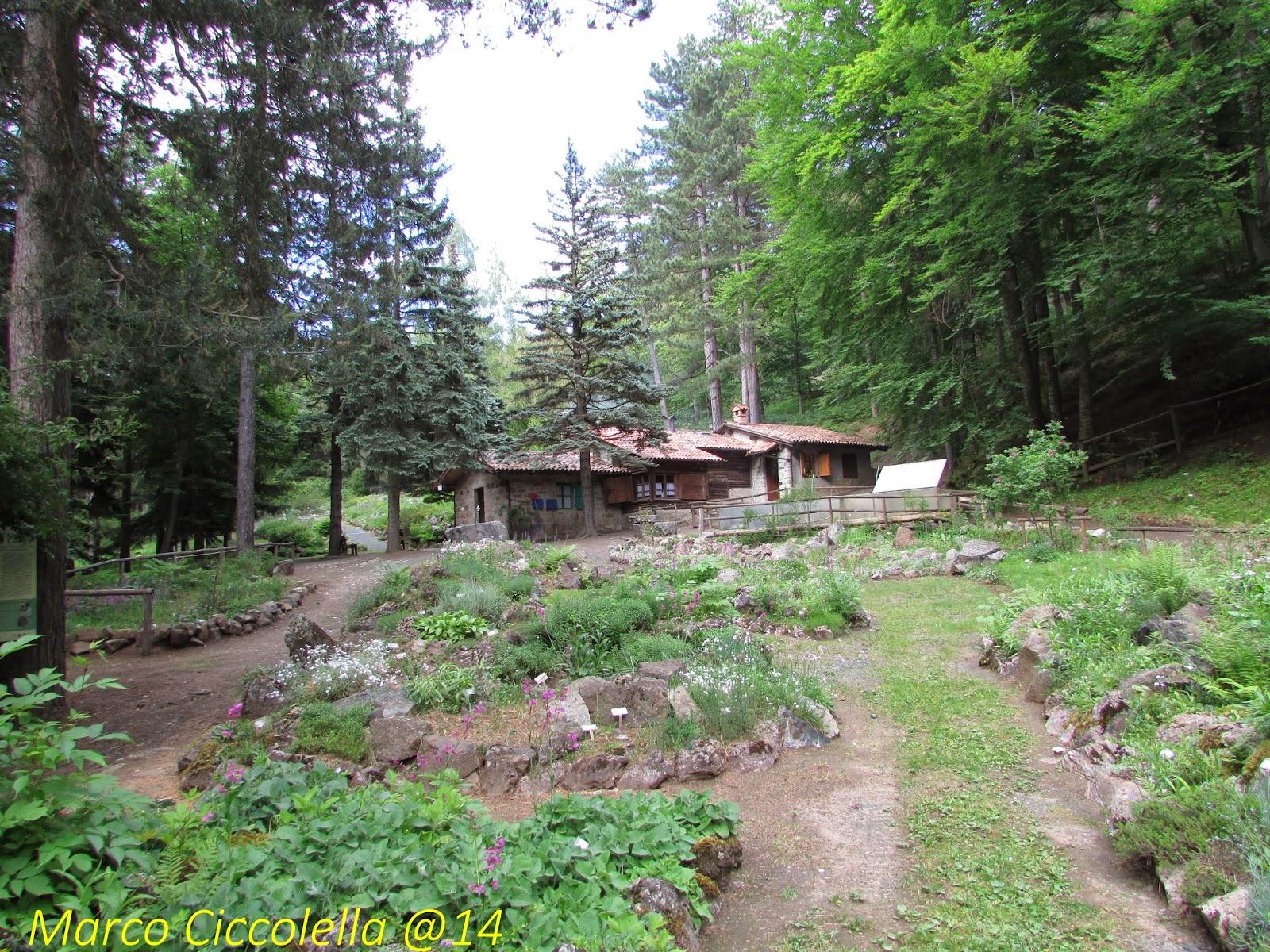 Giardino Pietra Corva : Giardino botanico alpino pietra corva