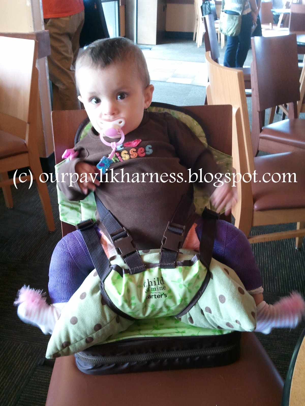 Our Pavlik Harness and journey with Hip Dysplasia: 2012