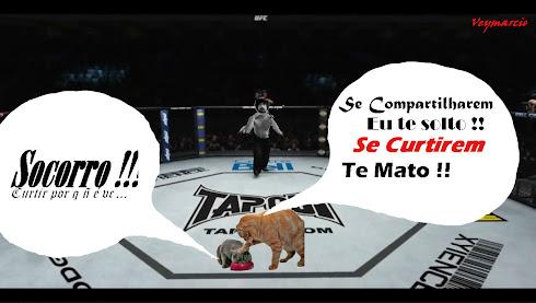 UFC veymarcio.blogspot.com
