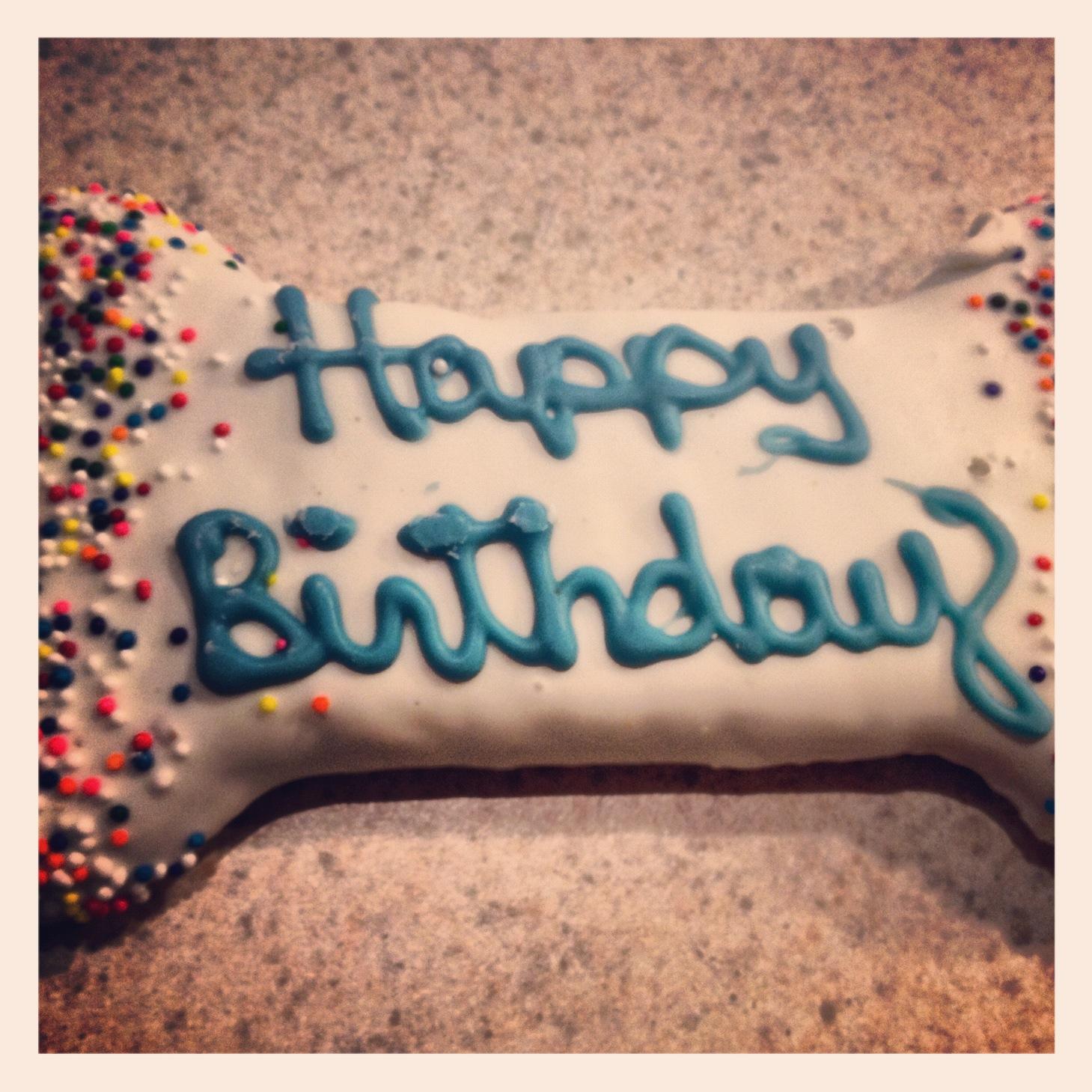 Dog Lcking Birthday Cake
