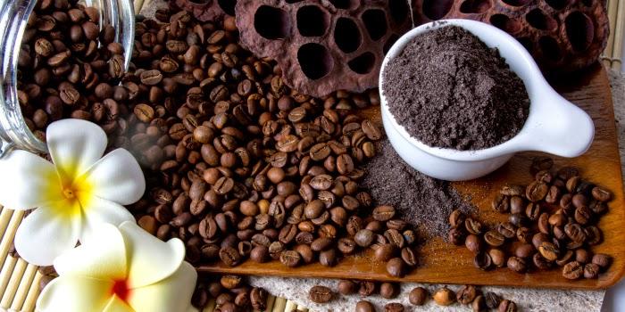 Image result for manfaat kopi untuk kecantikan