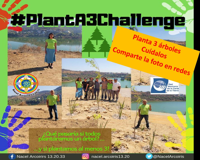 PlantA3Challenge