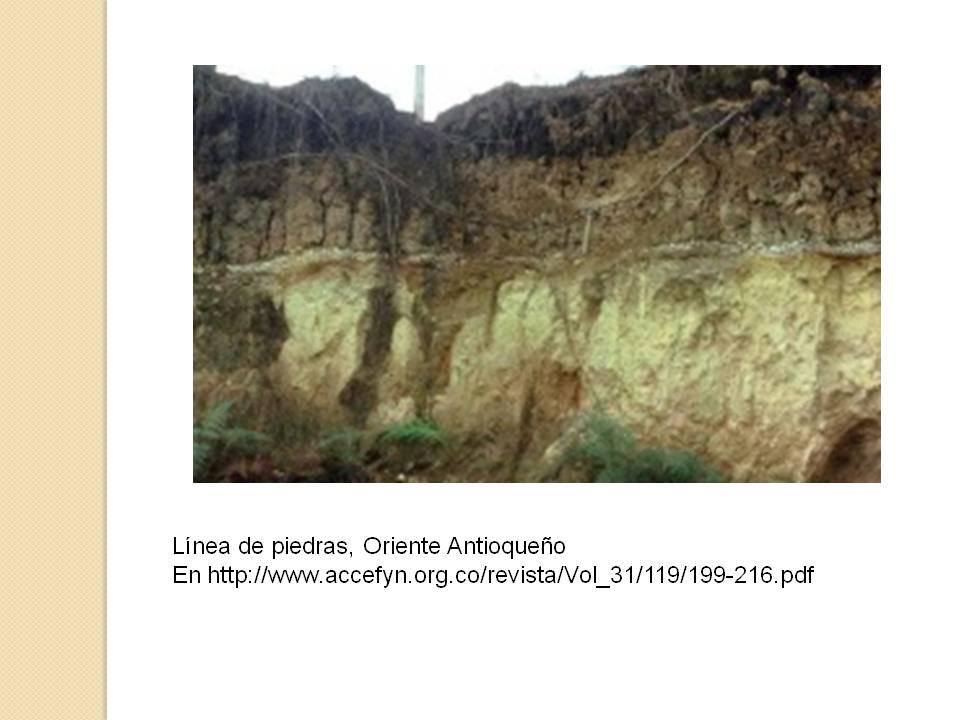 Luznellyz desarrollo perfil de suelo en oriente antioque o for Perfil del suelo wikipedia
