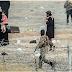 မေလးရွား မိဘ မ်ားက မိမိခေလးငယ္မ်ားအား အၾကမ္းဖက္သင္တန္း တက္ရန္ ISIS အဖြဲ ့သို ့ပို ့့ေဆာင္ေနၾက
