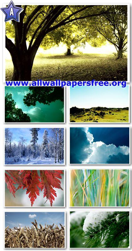 40 Amazing Nature Wallpapers 1920 X 1200 [Set 15]