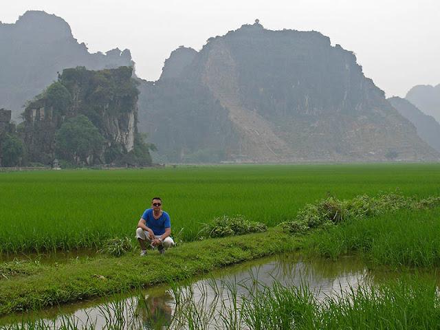 Rizières et pics calcaires au Vietnam