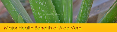 Aloe Vera, Health Benefits, Major,