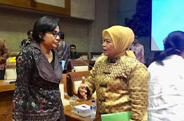 Elviana: Komisi XI DPR RI Dorong Menkeu Perbanyak Diklat Penggunaan Dana Desa