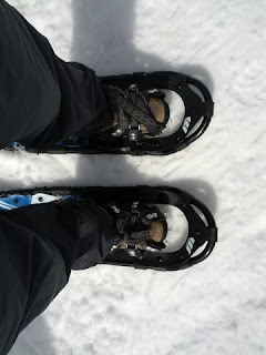 My feet strapped into snowshoes.