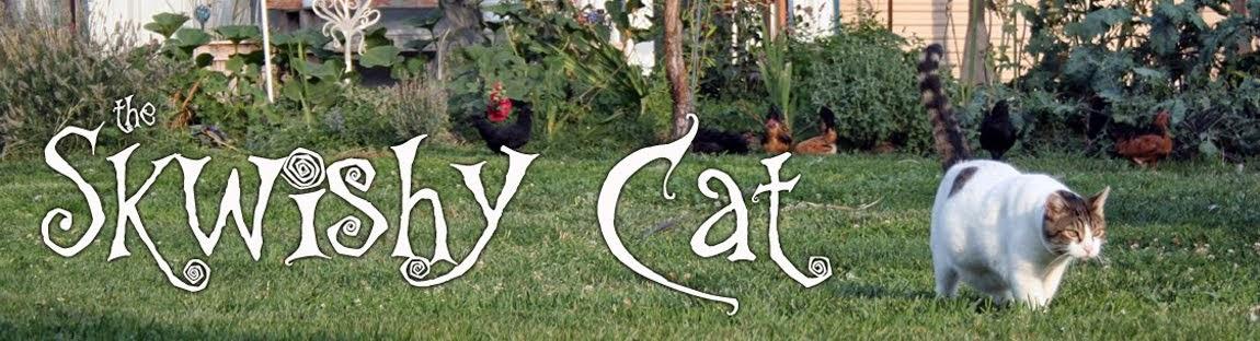 the Skwishy Cat