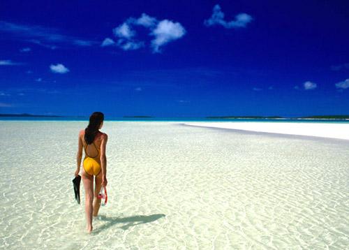 Ocean Prime South Beach