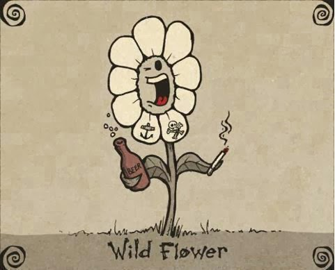 Wild Flower Cartoon