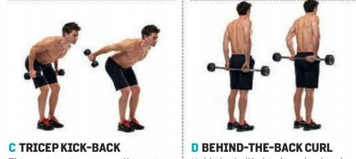Tricep and Back Curl