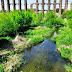 IU-Mérida advierte sobre el mal estado del entorno del Acueducto de los Milagros.