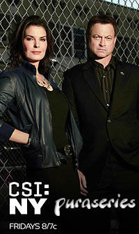 Csi New York 9×01 Sub Español