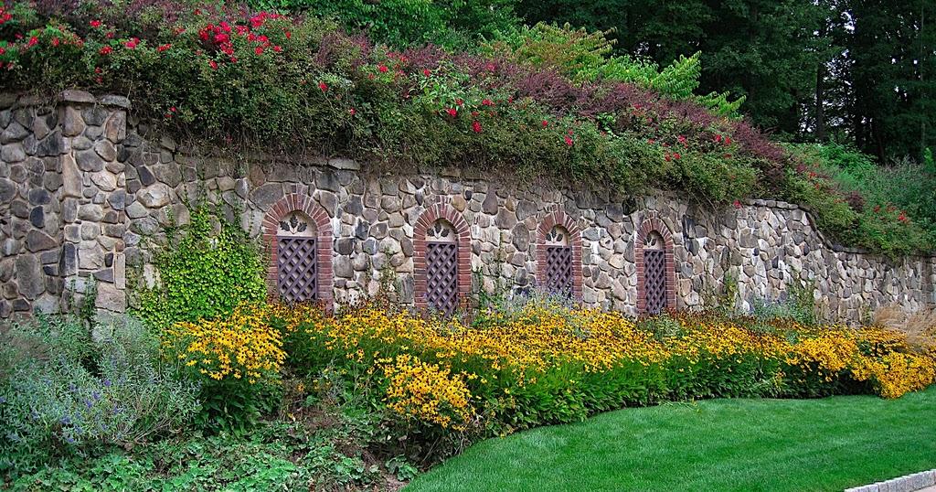 Dise o de jardin con flores y plantas decorativas patios for Plantas y jardines