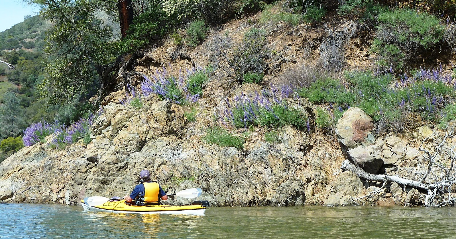 Norcal yak berryessa offers free guided kayak tours and more for Lake berryessa fishing