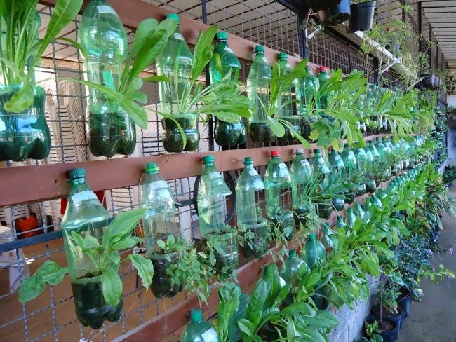 Reap rede de educa o ambiental da alta paulista como for Cosas recicladas para el jardin