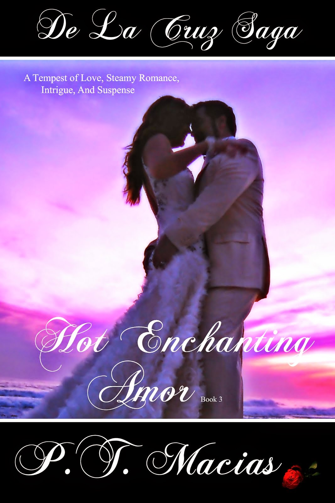 Hot Enchanting Amor, De La Cruz Saga Book 3