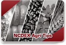 Agri Commodity Tips,chana ncdex,ncdex turmeric, NCDEX soyabean, ncdex jeera, free agri calls
