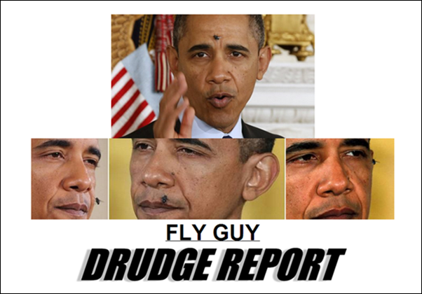 obama attracts flys 