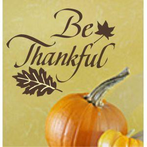 http://4.bp.blogspot.com/-siv8ZD7Bth8/UJQ_nLsQqEI/AAAAAAAADqY/ieqbouxXrX4/s1600/be-thankful.jpg