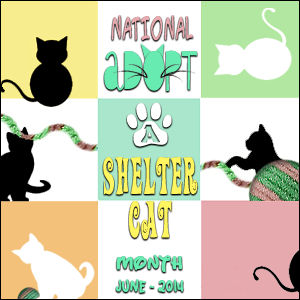 Adopt-a-Shelter-Cat
