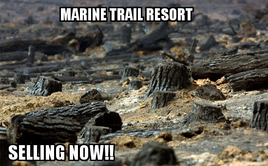 Marine Trail Resort properties for sale