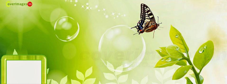 gambar kronologi facebook keren kupu-kupu