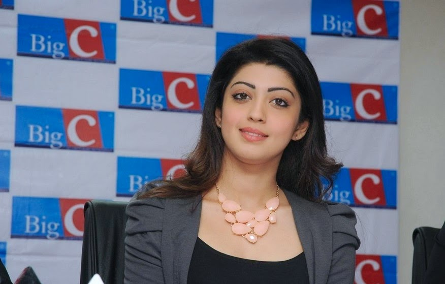 Pranitha Launches Big C Dussehra Offers Page 3 Gallery