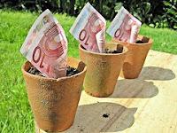 afbeelding van geld in plantenpotten