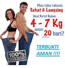 obat diet ampuh dan aman