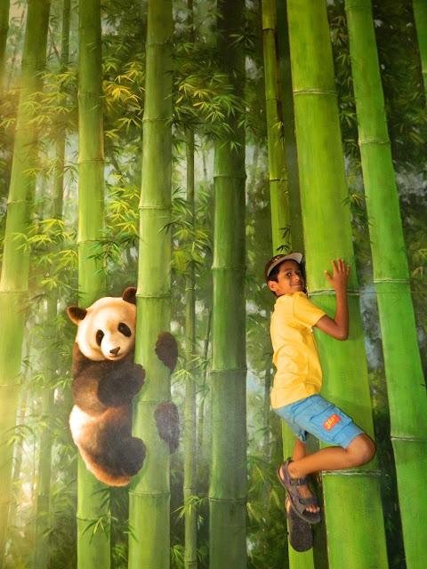Climbing with the panda