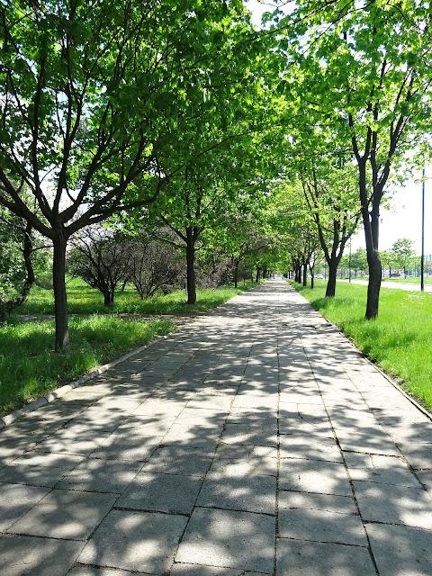 Chodnik przy Ostrobramskiej to już historia