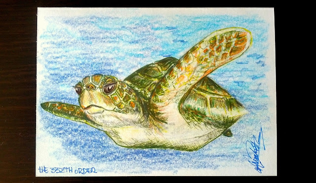 Thank you card - Turtle, Elizabeth Casua, tHE 33ZTH oRDER