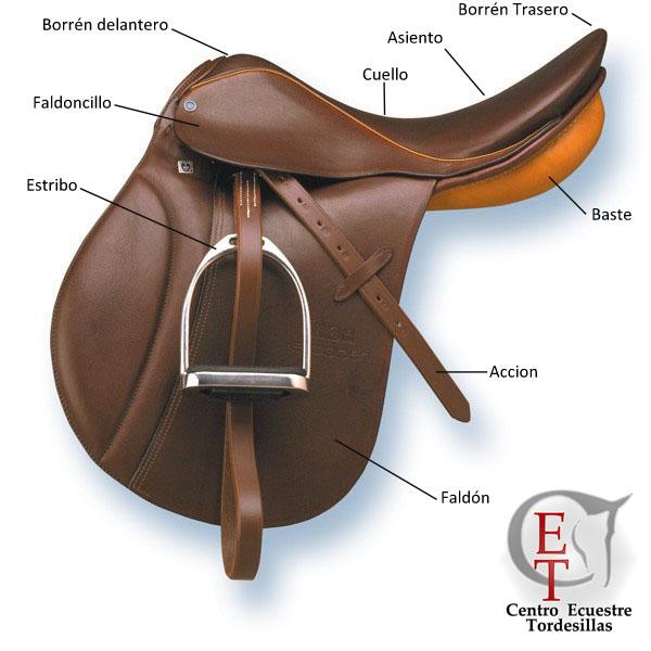 Centro ecuestre tordesillas las partes de la montura inglesa - Silla montar caballo ...