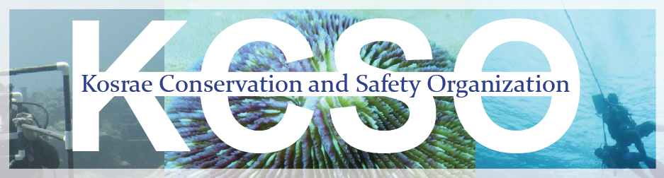 Kosrae Conservation & Safety Organization
