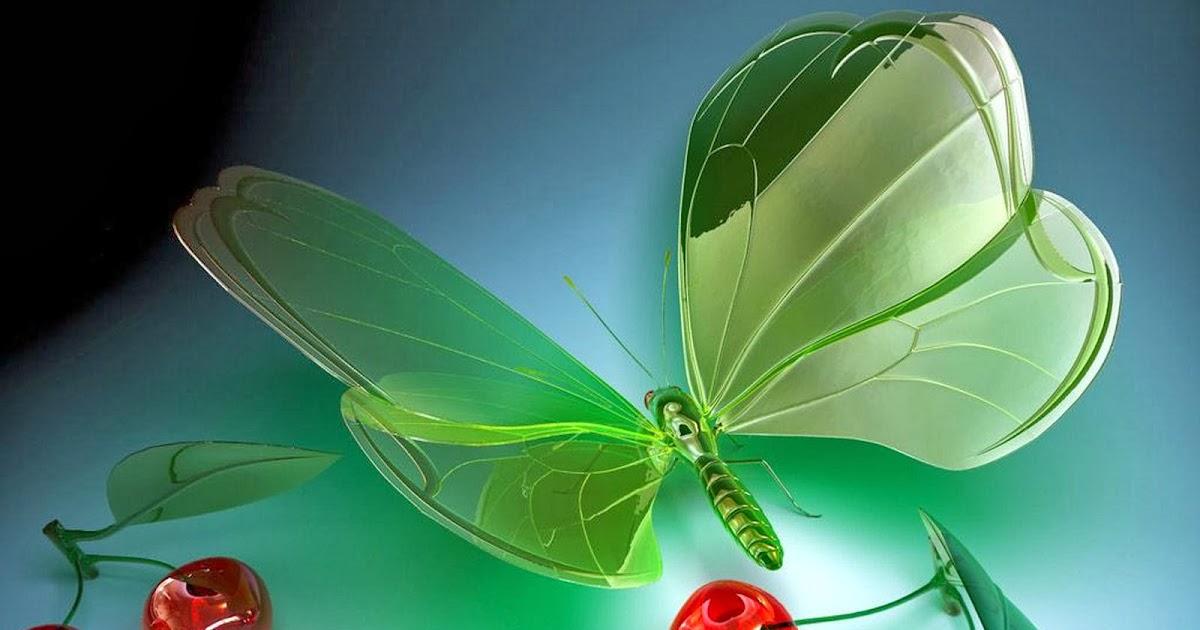 Hd wallpaper butterfly - Hd Butterflies Hd Butterfly Wallpapers Free Download