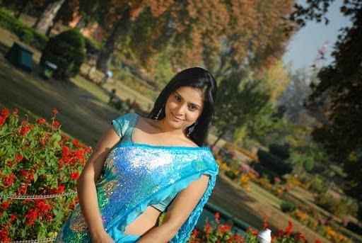 Ramya Divya Spandana Cute Saree Photo Shoot