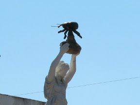boll weevil atop monument