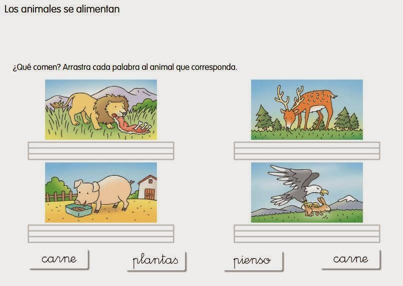 http://www.ceiploreto.es/sugerencias/cp.juan.de.la.cosa/Actividades%20PDI%20Cono/01/08/04/010804.swf